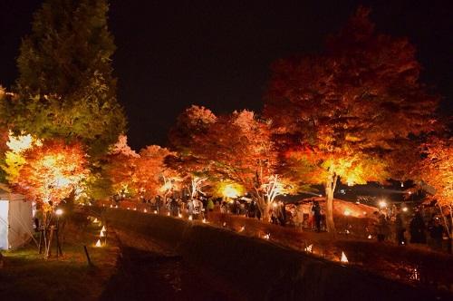 河口湖紅葉ライトアップ